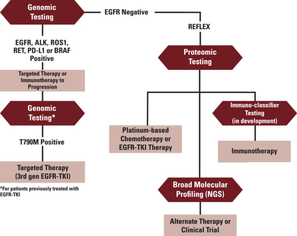 New Biomarker Panel Could Accelerate >> Rapid Biomarker Testing For Improved Clinical Decision Making In Non